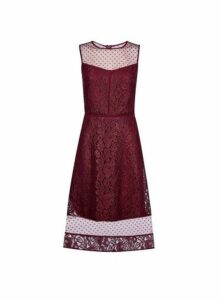 Womens **Luxe Mulberry Lace Mix Midi Dress- Red, Red