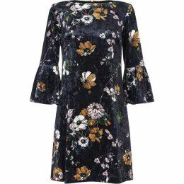 Adrianna Papell Serene Garden Velvet Shift Dress