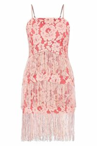 Womens Lace and Tassel Bodycon Dress - Pink - 10, Pink