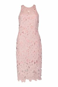 Womens Lace Sweetheart Bodycon Midi Dress - pink - 12, Pink