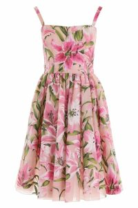 Dolce & Gabbana Lily Print Dress