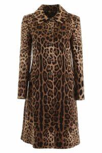 Dolce & Gabbana Leopard-printed Coat