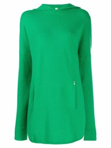 Extreme Cashmere Nº51 gang hoodie - Green