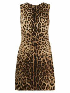 Dolce & Gabbana leopard pattern shift dress - Brown