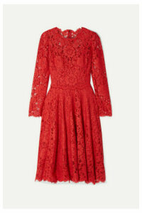 Dolce & Gabbana - Corded Lace Dress - Red