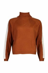 Womens Stripe Detail Roll Neck Jumper - nutmeg - XS, Nutmeg