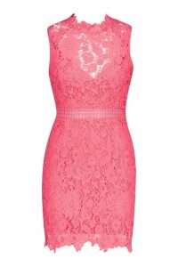 Womens Lace Scallop High Neck Bodycon Dress - orange - 8, Orange