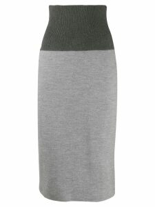 Fabiana Filippi high-waisted skirt - Grey
