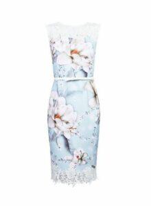 Womens **Showcase Blue Floral Print 'Ella' Lace Dress- Blue, Blue