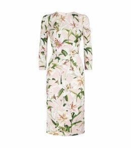 Lily Print Midi Dress