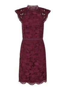 Womens *Chi Chi London Burgundy Crochet Bodycon Dress- Red, Red