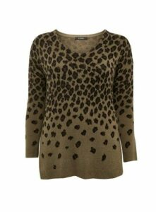 Khaki Animal Print V-Neck Jumper, Khaki