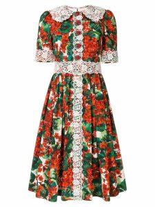 Dolce & Gabbana scalloped lace shirt dress - Multicolour
