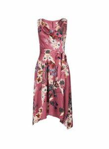 Womens **Billie & Blossom Petite Rose Floral Print Midi Dress- Purple, Purple
