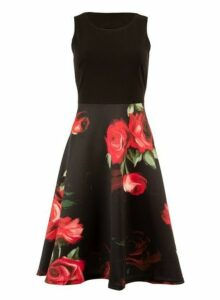 Womens *Feverfish Black Floral Print Skater Dress- Black, Black
