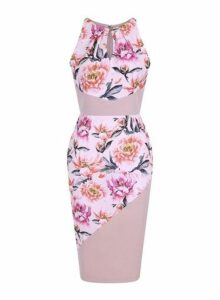 Womens **Paper Dolls Blush Printed Bodycon Dress- Pink, Pink