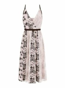 Womens **Little Mistress Mink Lace Sequin Midi Dress- Brown, Brown