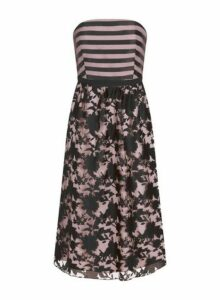 Womens **Little Mistress Black Monochrome Stripe Print Bandeau Midi Dress- Black, Black