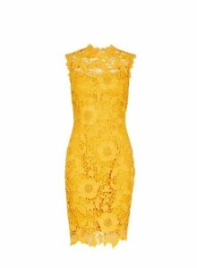 Womens **Showcase Yellow 'Erica' Lace Bodycon Dress- Yellow, Yellow