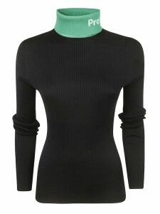 Proenza Schouler Turtle Neck Sweater