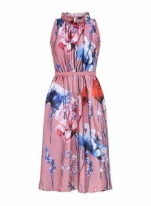 Womens **Little Mistress Blush Floral Print Ruffle Dress- Pink, Pink
