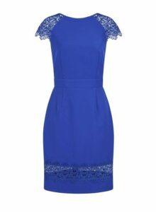 Womens **Paper Dolls Cobalt Lace Bodycon Dress- Blue, Blue