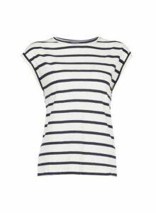 Womens Petite Multi Coloured Stripe Print Cotton T-Shirt- Blue, Blue