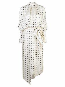 Petar Petrov polka dot shirt dress - White