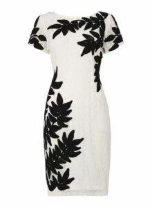 Womens *Roman Originals Ivory Tapework Bodycon Dress- White, White