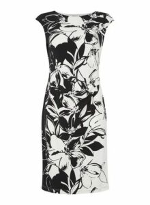 Womens *Roman Originals Black Floral Jersey Scuba Dress- Black, Black