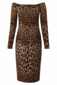 Dolce & Gabbana Animalier Midi Dress
