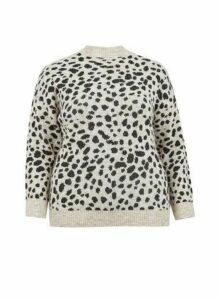 Womens **Dp Curve Grey Leopard Print Spandex Jumper- Cream, Cream