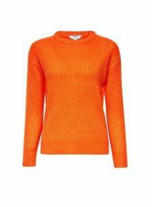 Womens Petite Orange Ribbed Stitch Jumper- Orange, Orange