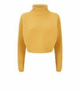 Mustard Roll Neck Crop Jumper New Look