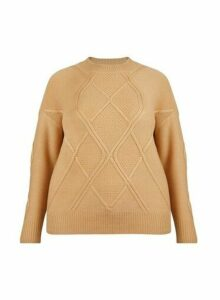Womens **Dp Curve Camel Diagonal Jumper- White, White