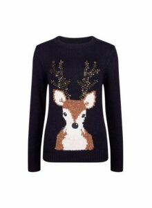 Womens Navy Christmas Sequin Reindeer Jumper- Blue, Blue