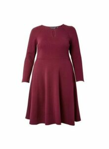 Womens **Dp Curve Berry Red Fit And Flare Dress, Red