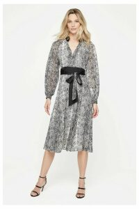 Womens Damsel In A Dress Neutral Brooklyn Snake Print Dress -  Natural