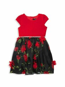 Little Girl's Rose Jacquard Dress