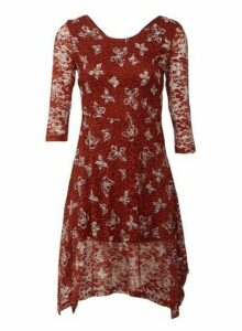Womens *Izabel London Rust Butterfly Print Dress- Red, Red