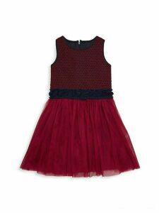 Little Girl's Mesh Tutu Dress