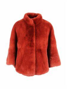 Rex Coat